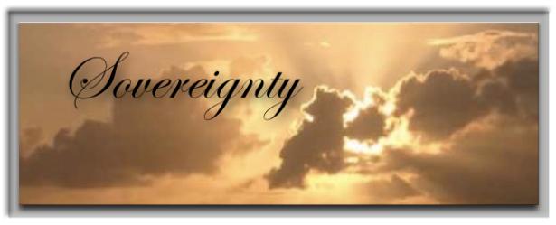 Sovereignty Banner 1