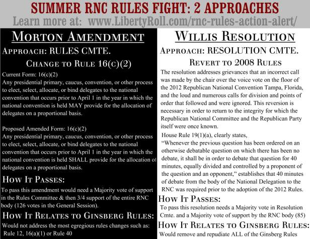 RNC Resolution Flyer 2013