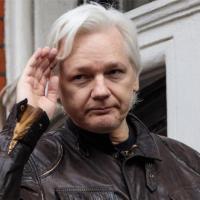 The 'Murder' Of Julian Assange